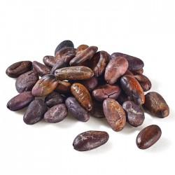 Fèves de cacao pelées BIO...