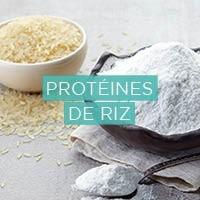 protéine de riz biogermé biologique