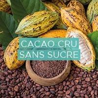 Chocolat 100% a base de cacao cru biologique