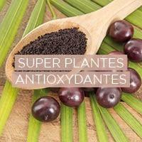 Superaliments biologiques antioxydants