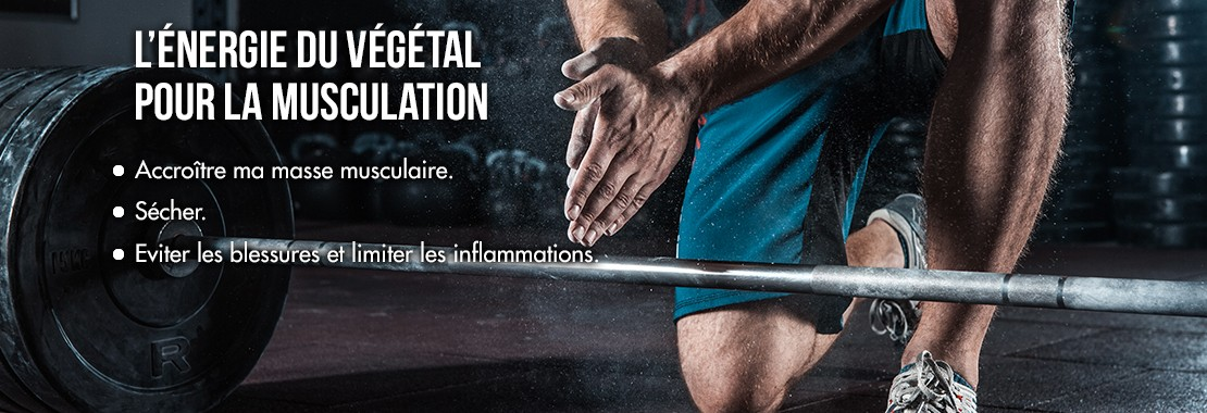 L'énergie du végétal pour la musculation